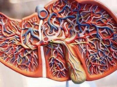 脚先知,肝脏怎么样?脚上一般有四个变化,或者肝脏在向你抱怨