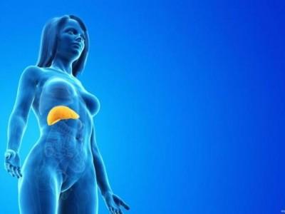 注意:如果这四种异常出现在上半身,就要小心肝脏癌变。