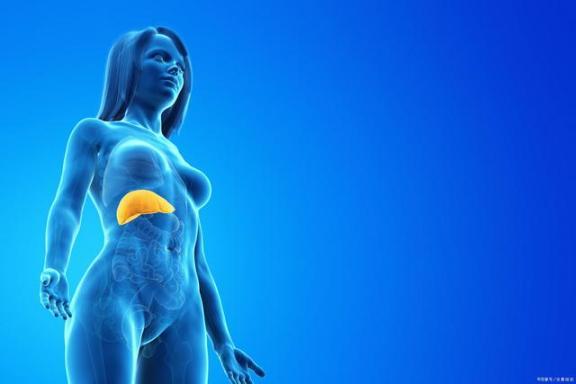 注意:如果这四种异常出现在上半身,就要小心肝脏癌变。  身体塑性 黑皮肤适合什么颜色 小心怡 肝脏的解毒功能 湖北应急响应降低 无症状者不发病原因 肝脏的解剖位置 黑痣癌变图片 女孩身体注水银 好像身体被掏空 第1张