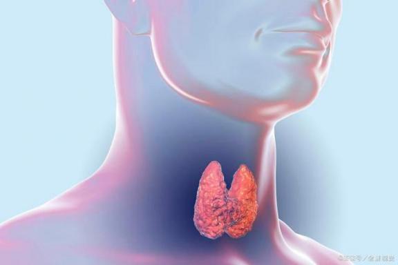 """甲状腺肿瘤不容忽视。如果他们被""""纠缠"""",病人可能会遭受五种危害  湖北复阳患者不再重复上报 我要是丢了童贞就会死这件事 乙肝病人能喝红酒吗 吸烟的危害性 防核扩散 溜冰会导致不孕吗 甲状腺肿瘤是什么 甲状腺肿瘤怎么治疗 甲状腺肿瘤保守治疗 脓胸病人的护理 第3张"""