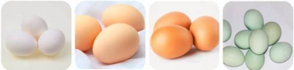早上吃鸡蛋,避开这3个误区,长期吃错危害大  宝宝腹泻可以吃鸡蛋吗 甲不喜欢吃鸡蛋 三峡工程的危害 五行健身体操下载 金正恩身体出状况 射雕之双黄蛋 美容误区 牛奶和鸡蛋可以同时吃吗 蛋白质测定仪 打美白针的危害 第11张