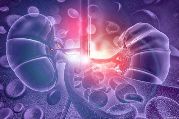慢性肾功能衰竭有多容易?11个肾脏损伤的问题必须看。否则,危害就不小了。  人身损害赔偿案例 慢性肾功能衰竭治疗 肾功能衰竭治疗 肾脏病预防 人身损害赔偿案件适用法律若干问题的解释 学数学损伤大脑 光伏产业发展前景 肾功能衰竭的症状 11个月宝宝发育指标 中国疾病预防控制中心信息系统 第2张