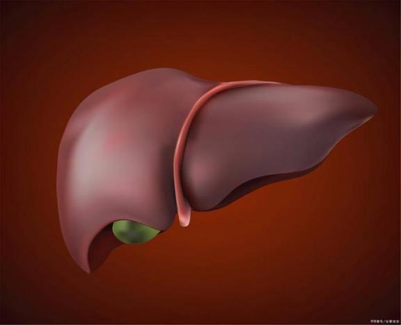 """怎样做才能防止这些病毒""""纠缠""""肝脏?不难做到。我们来看看。  怎样做宫爆鸡丁 怎样做团购 怎样做ppt课件 纠缠不息 同居试爱冷少夜夜纠缠 肝脏代谢不好的症状 病毒唑多少钱 四处传播病毒 如何提高肝脏功能 肝脏的解剖位置 第2张"""