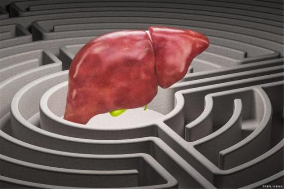 """怎样做才能防止这些病毒""""纠缠""""肝脏?不难做到。我们来看看。  怎样做宫爆鸡丁 怎样做团购 怎样做ppt课件 纠缠不息 同居试爱冷少夜夜纠缠 肝脏代谢不好的症状 病毒唑多少钱 四处传播病毒 如何提高肝脏功能 肝脏的解剖位置 第1张"""