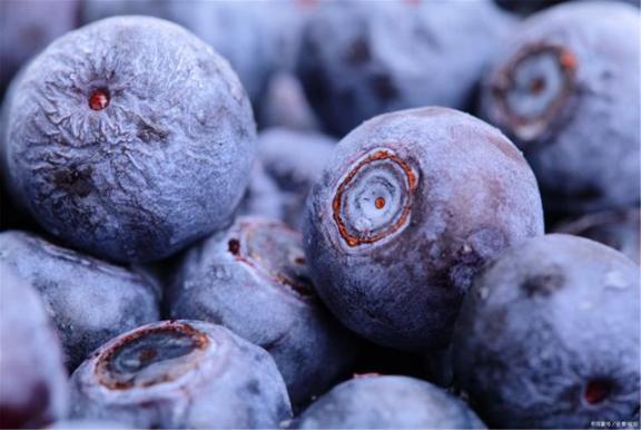 四种水果对视力好,缓解眼疲劳,家家户户都买得起。  东菱水果豆浆机食谱 凌视视力恢复加盟 标准视力表图 水果的产地 桃子属于什么类水果 保护视力的颜色 第2张