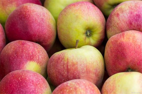 四种水果对视力好,缓解眼疲劳,家家户户都买得起。  东菱水果豆浆机食谱 凌视视力恢复加盟 标准视力表图 水果的产地 桃子属于什么类水果 保护视力的颜色 第4张