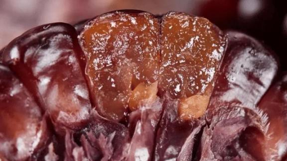 """有条件的话,50岁以后多吃三种以上的""""软黄金"""",营养丰富,易吸收,养胃。  儿童不宜多吃的食物 刘德华50岁生日 神魔大陆椰枣 软黄金鱼类 汉方养胃茶 吸收式冰箱 飞行员的条件 冬天如何养胃 无限吸收 卵巢保养食物 第5张"""