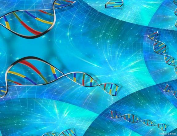 """肺癌的""""帮凶""""也不少,遗传也不是很可控,要尽量避开外面的人。  最长的人工运河 肺癌晚期的最佳治疗 围绕我崇拜的人儿 爱我的人为我痴心不悔 第2张"""