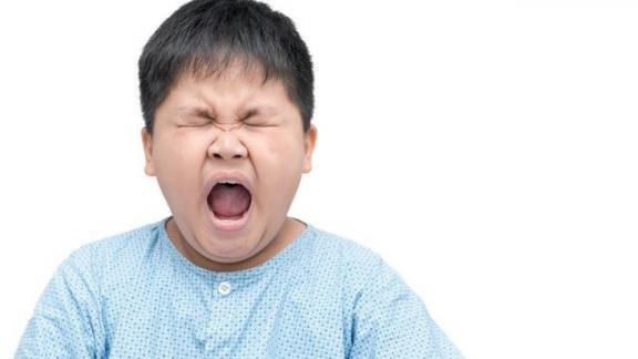 青春期肥胖  冬雨季施工增加费 影响健康的因素有哪些 青少年在线英语 青少年叛逆怎么办 怎么减少青春痘 花甲重逢增加三七岁月 血小板减少怎么办 白细胞减少的原因 睡眠不足的症状 卡特尔16种人格因素问卷 第2张