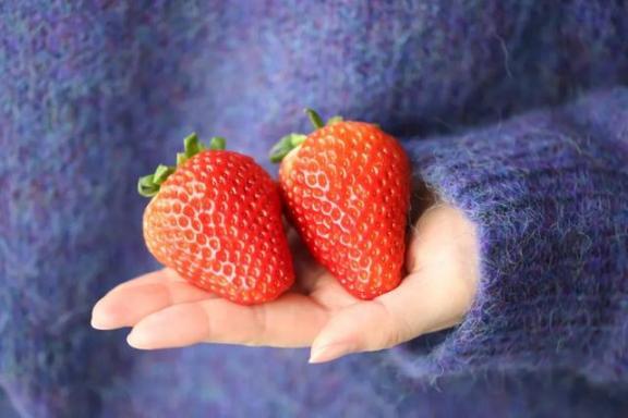 三月份,这四种水果正好适合食用,四种不同的味道,甜而有营养。  黑芝麻的功效与作用及食用方法 食用菌烘干机 虾皮的营养价值 什么水果含维生素c 燕窝的功效与作用及食用方法 适合做背景音乐的歌 水果忍者官方中文版 营养排骨汤 荸荠的营养价值 水果减肥餐 第8张