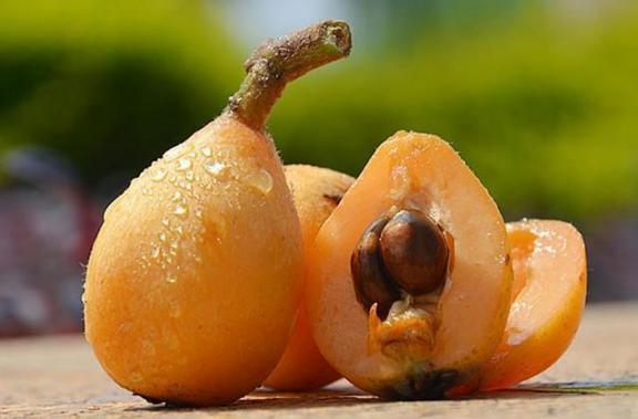 气候干燥,这些季节性水果可以多吃,营养价值高有助于健康。  女人多吃什么抗衰老 美味水果对对碰 黄鳝的营养价值 山竹一天最多吃几个 过年送水果 气候峰会 季节性过敏怎么办 孕妇应该多吃什么水果 气候变化的影响 猪血的营养价值 第4张