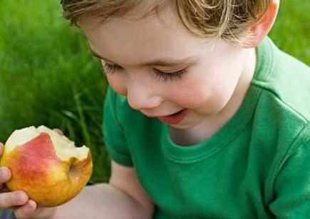 春季,适合老少食用的三种水果,新鲜可口,去春燥,正当季节放开食用。  可口可乐福娃 新鲜的刺须鲶鱼 栀子花开的季节 可口可乐小子 食用花卉 新鲜的事物 水果总动员 食用油价格走势 开学新鲜事作文 摘草莓的季节 第1张