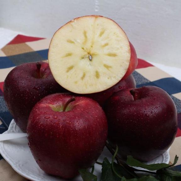 想养胃的人,尽量少吃或者不吃这三种水果,胃会感激你的。  变了心的人 留点感激在心中 被生活网住的人生 健脾养胃的药 感激涕零的意思 皮肤过敏吃什么水果 哪些食物养胃 晚饭不吃好吗 快乐水果 热带水果之王 第6张